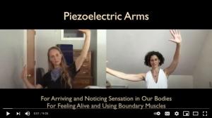 Piezoelectric Arms